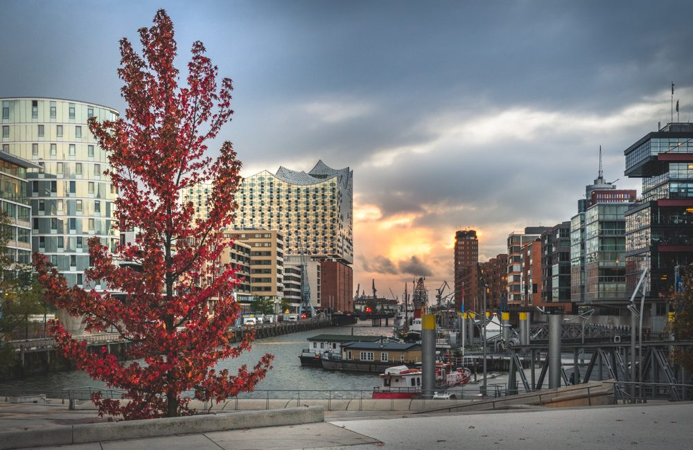 Blick auf den Sandtorhafen und die Elbphilharmonie im Herbst. Foto: Kerstin Bittner