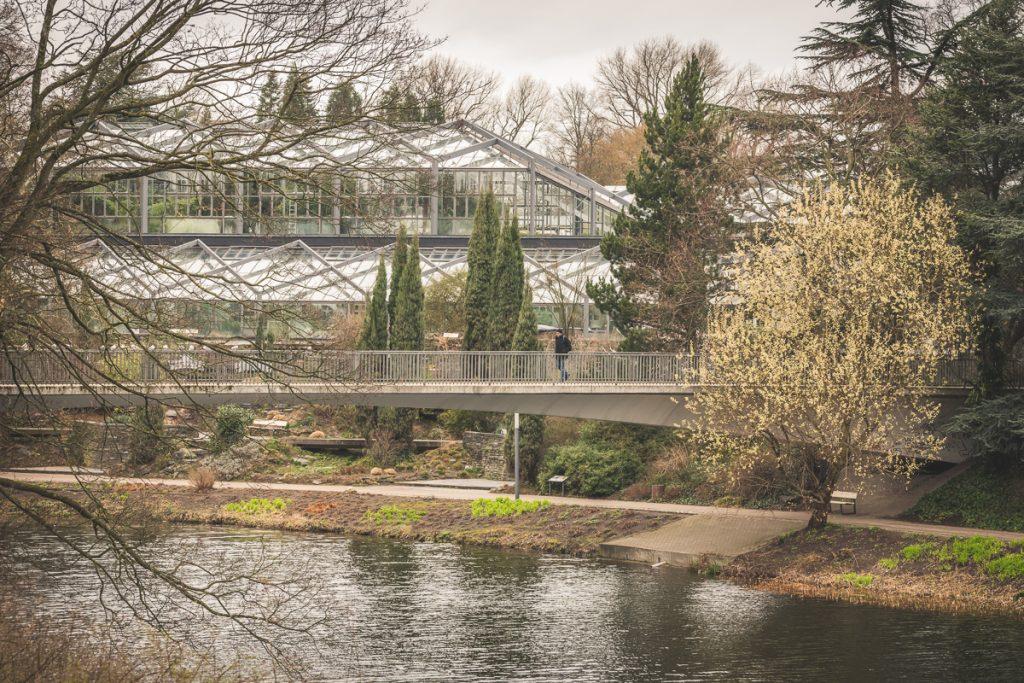 Außenansicht der Tropengewächshäuser der Universität Hamburg im Park Planten und Blomen. Foto: Kerstin Bittner