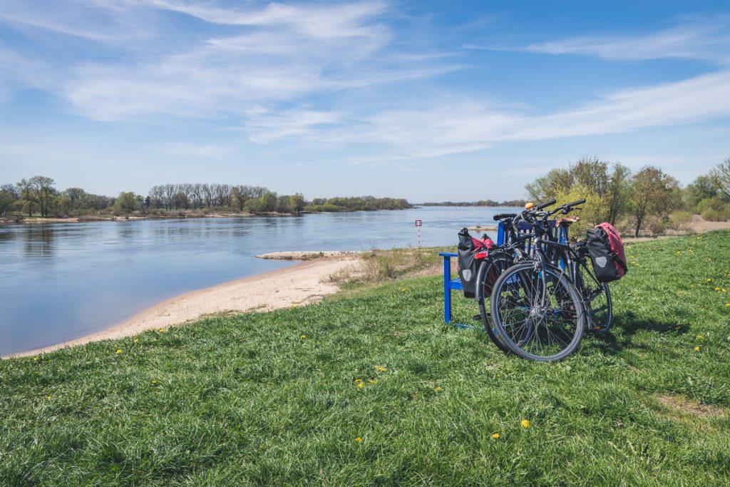 Fahrräder auf dem Elberadweg. Foto: Kerstin Bittner