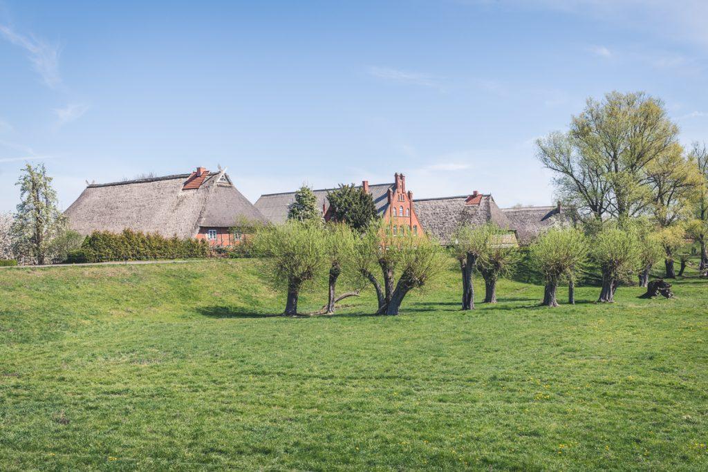 Reetgedeckte Fachwerkhäuser im Elbedorf Kronau. Foto: Kerstin Bittner