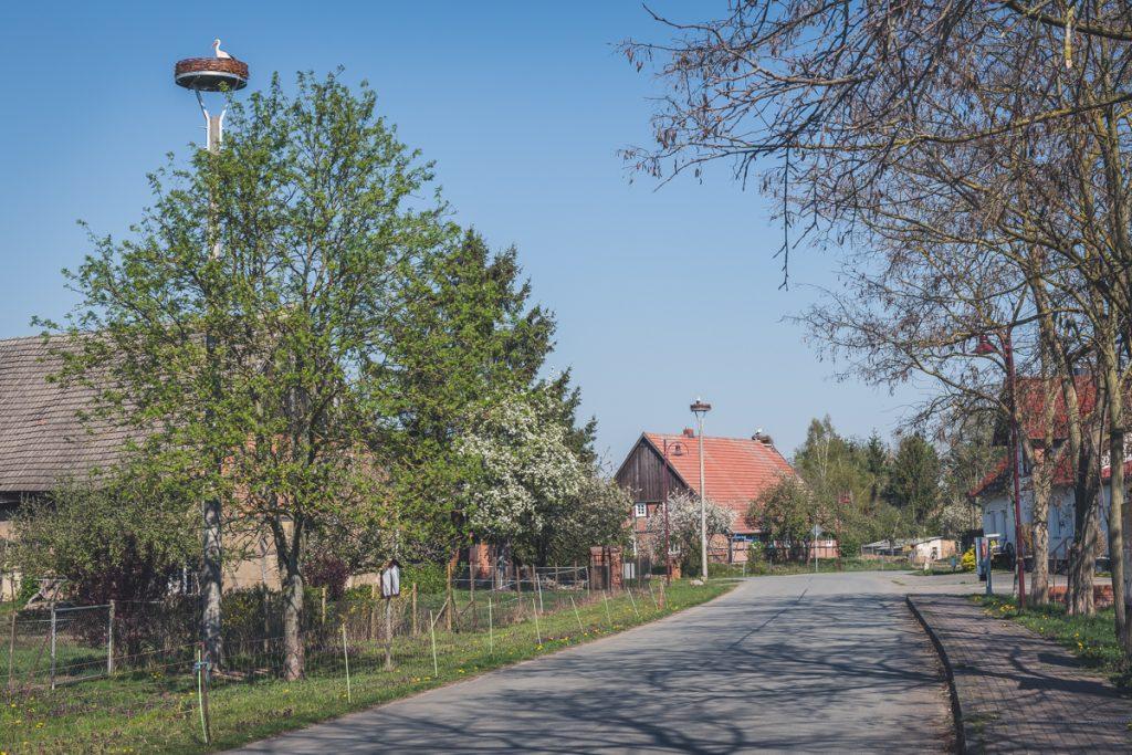 Storchendorf Wahrenberg mit Storchennestern. Foto: Kerstin Bittner
