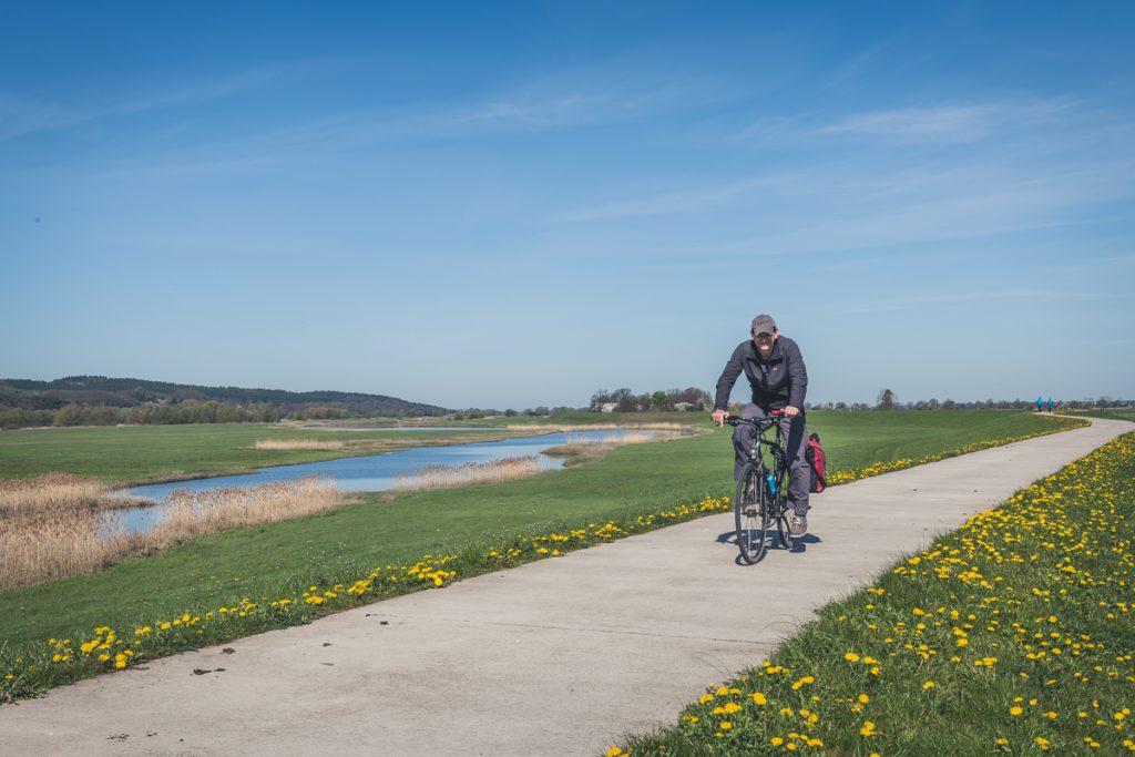 Radfahrer auf dem Elberadweg. Foto: Kerstin Bittner
