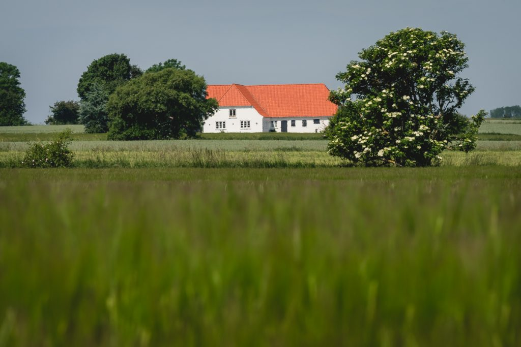Blog Ærø. Bauernhof. Foto: Kerstin Bittner