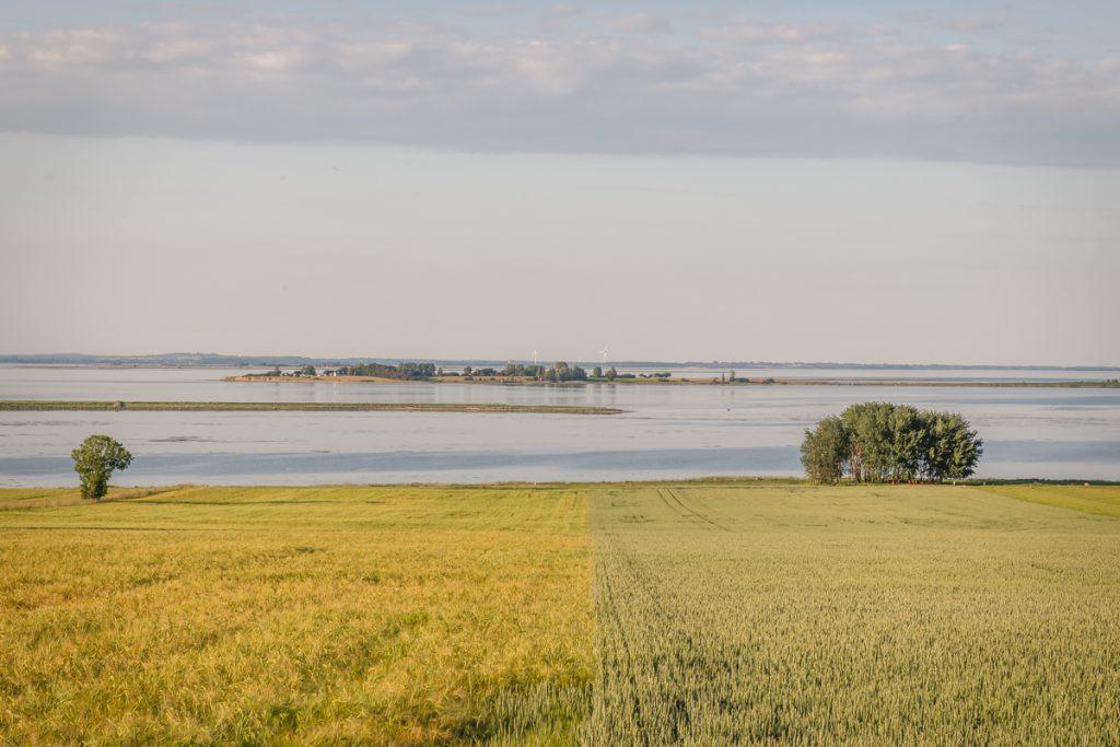 Blog Ærø. Landschaft. Foto: Kerstin Bittner