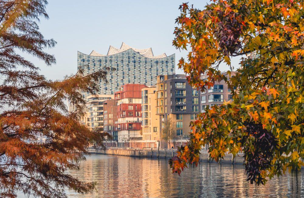 Herbstfärbung an den Marco-Polo-Terrassen in Hamburg mit Blick auf die Elbphiharmonie. Foto: Kerstin Bittner